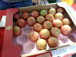 熊本八代 万彩市 はちべえトマト