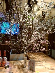 ハカタ092 春の花宴